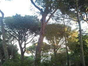 BeitMery-Blog3